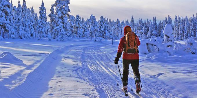 Image result for cross country skiing